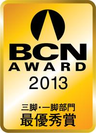 bcn2013.jpg